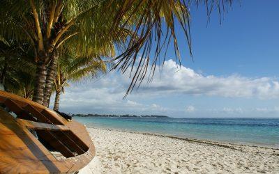 Venez profiter du climat tropical à l'Ile Maurice